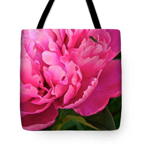 Behold The Beauty Tote Bag by Frozen in Time Fine Art Photography