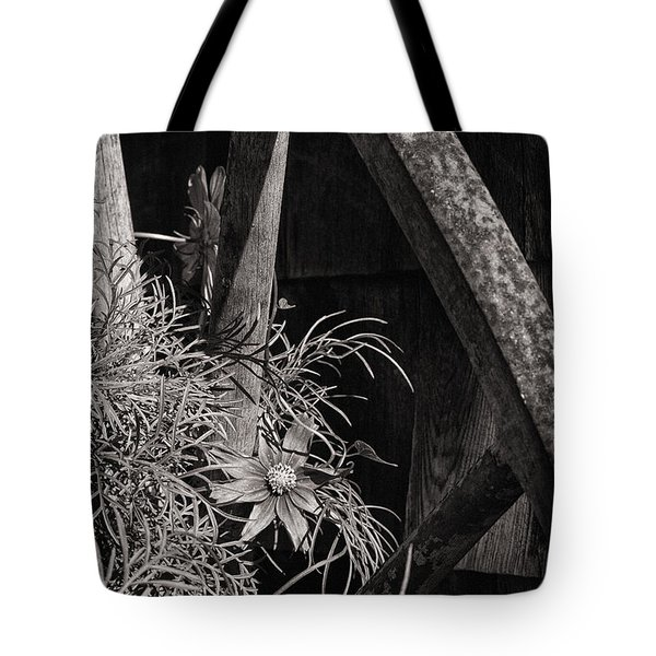 Beneath The Wheel Tote Bag by Susan Capuano