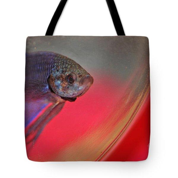 Beta Tote Bag by Joann Vitali