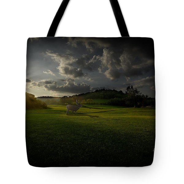 Big Buck In Field At Sunset Tote Bag by Dan Friend