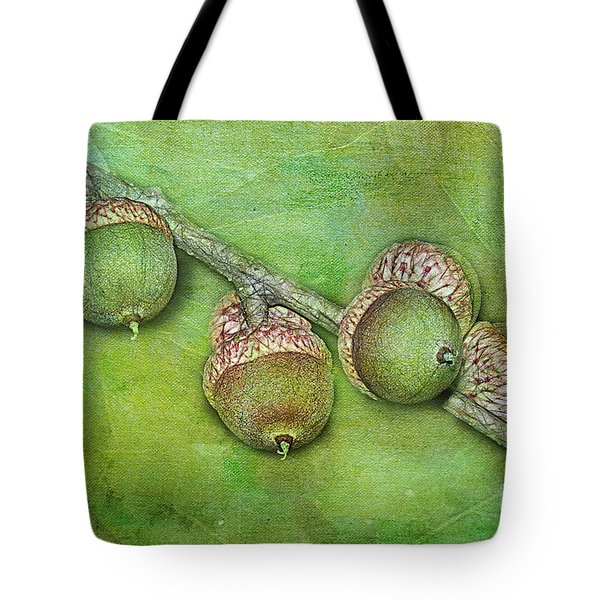 Big Oaks From Little Acorns Grow Tote Bag by Judi Bagwell