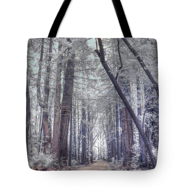Big Sur State Park Tote Bag by Jane Linders