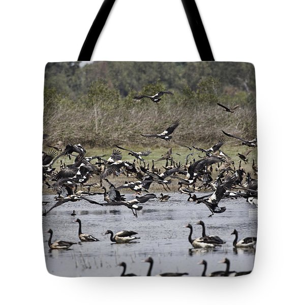 Billabong V11 Tote Bag by Douglas Barnard