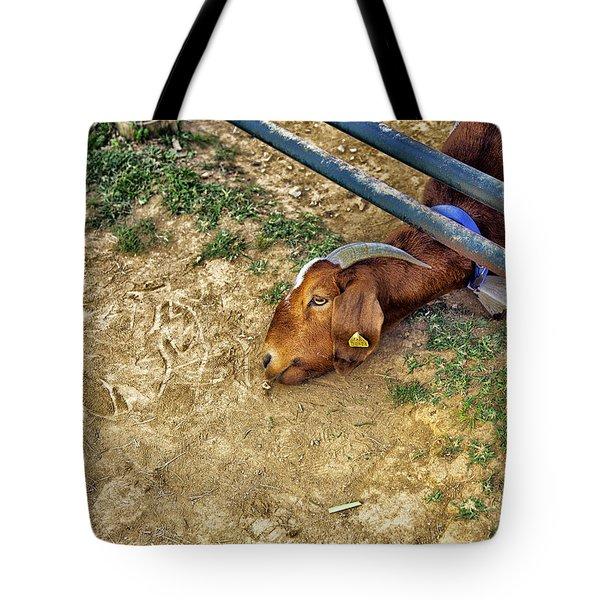 Billy's Escape Tote Bag by Madeline Ellis