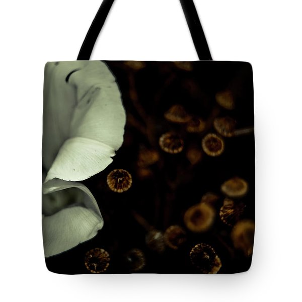 Bindweed And Seeds Tote Bag by Grebo Gray