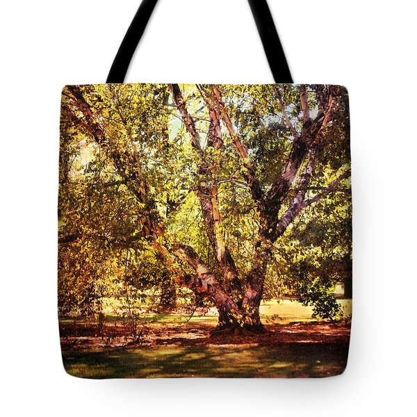 Birch Tree Tote Bag by Jai Johnson