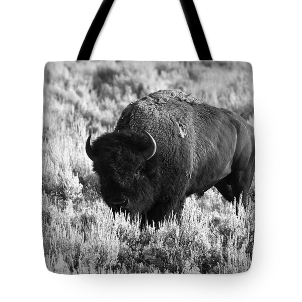 Bison In Black And White Tote Bag by Sebastian Musial