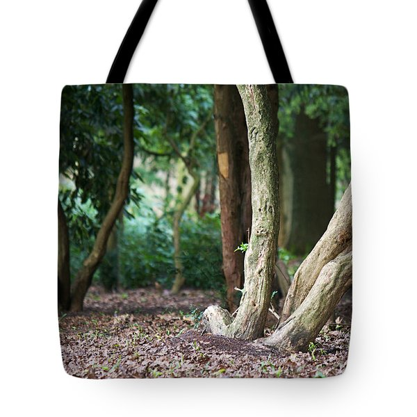 Bizarre Trees Tote Bag by Angela Doelling AD DESIGN Photo and PhotoArt