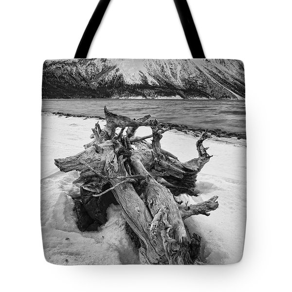 Black And White Version Of Kathleen Tote Bag by Robert Postma