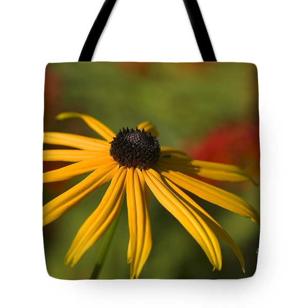 Black-eyed Susan 2 Tote Bag by Sharon Talson