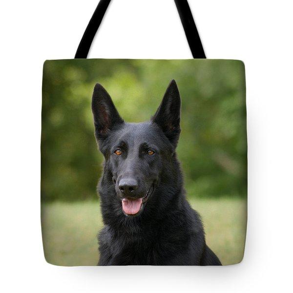 Black German Shepherd - Storm Tote Bag by Sandy Keeton