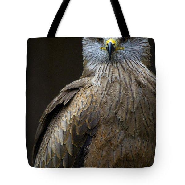 Black Kite 2 Tote Bag by Heiko Koehrer-Wagner