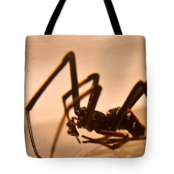 Black Widow Male 2 Tote Bag by Douglas Barnett