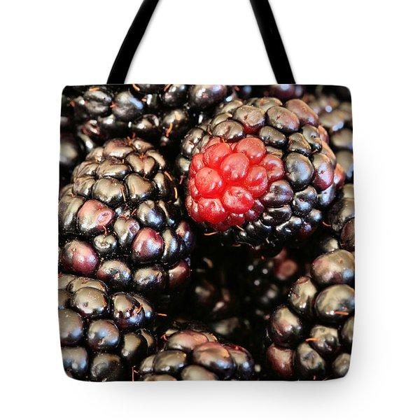 Blackberries  Tote Bag by JC Findley