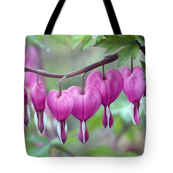 Bleeding Heart Tote Bag by Gail Jankus and Photo Researchers