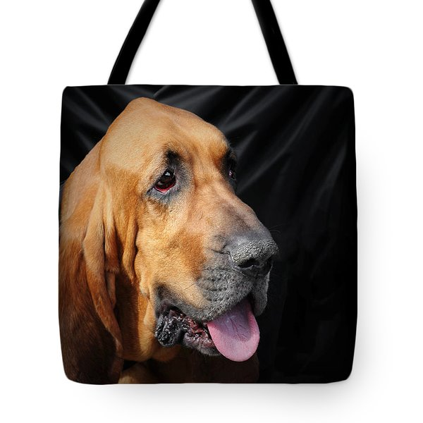 Bloodhound - Governed by a world of scents Tote Bag by Christine Till