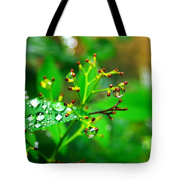 Bloomless Tote Bag by Toni Hopper