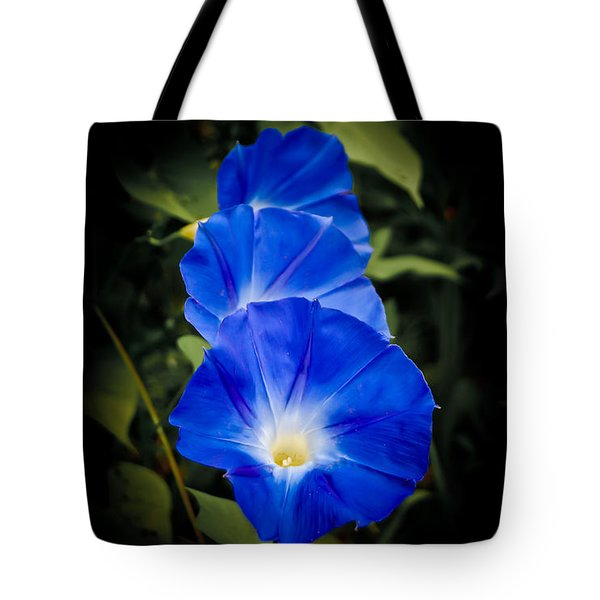 Blue Beauty Tote Bag by Swift Family