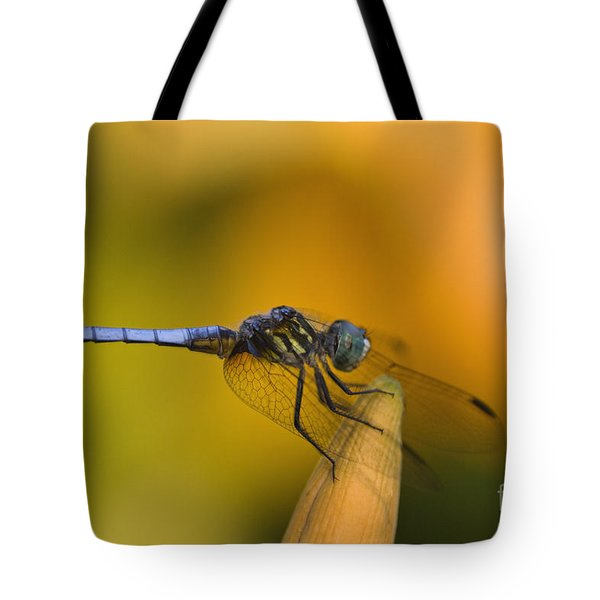 Blue Dasher - D007665 Tote Bag by Daniel Dempster