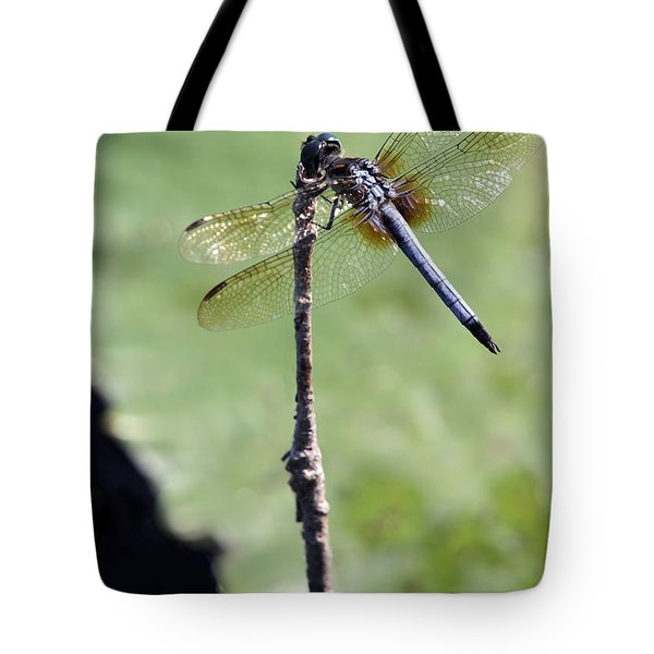 Blue Dasher Dragonfly Dancer Tote Bag by Sabrina L Ryan