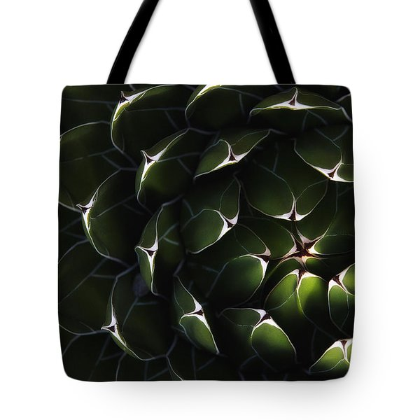 Bolivian Plant In Late Afternoon Light Tote Bag by Robert Postma