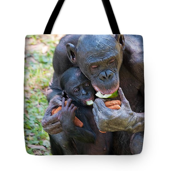Bonobo 3 Tote Bag by Kenneth Albin