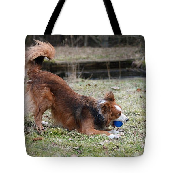 Border Collie Playing With Ball Tote Bag by Mark Taylor