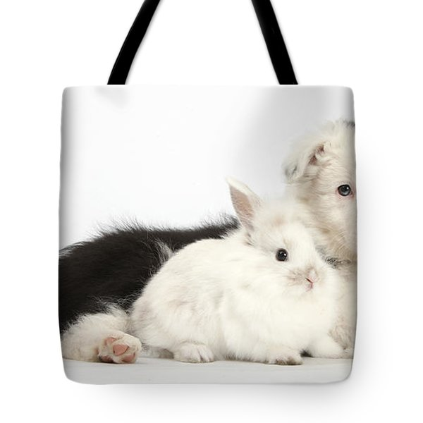 Border Collie Puppy With Baby Rabbit Tote Bag by Mark Taylor