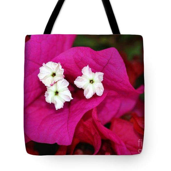 Bouganvillea Tote Bag by Sabrina L Ryan