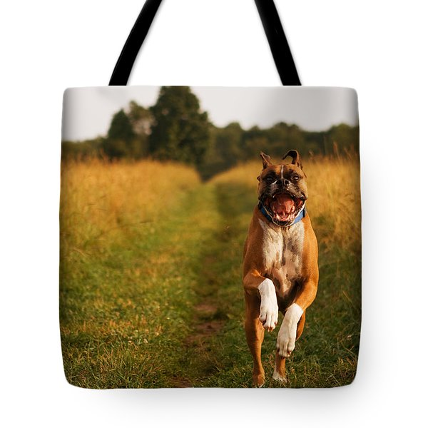 Boxer Dog Running Happily Through Field Tote Bag by Stephanie McDowell