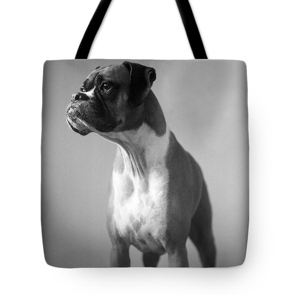 Boxer Dog Tote Bag by Stephanie McDowell