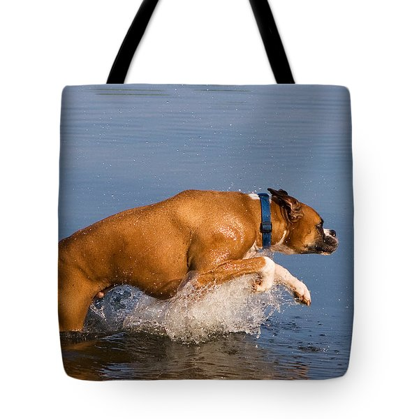 Boxer Playing In Water Tote Bag by Stephanie McDowell