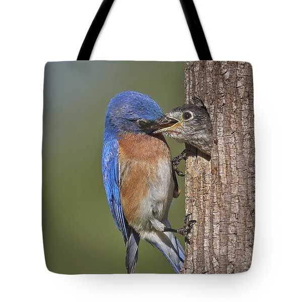 Breakfast Is Now Being Served. Tote Bag by Susan Candelario