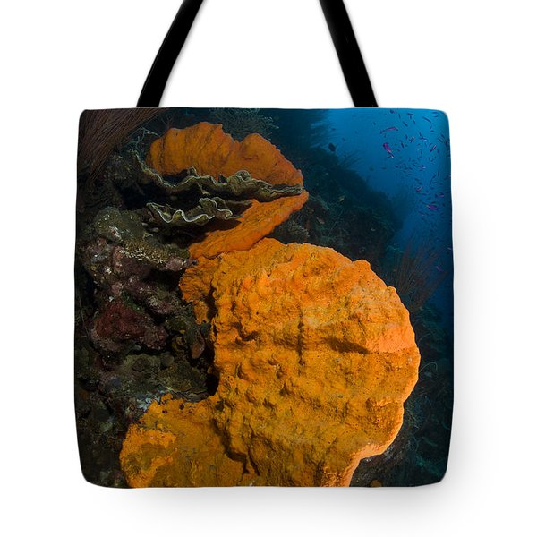 Bright Orange Sponge With Sunburst Tote Bag by Steve Jones