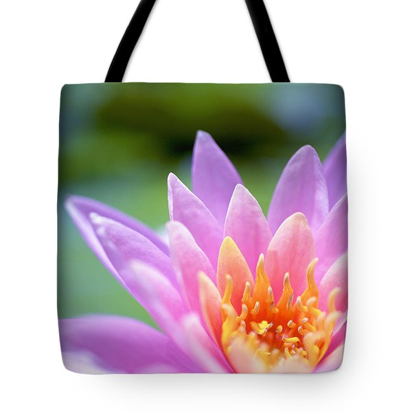 Bright Pink Water Lily II Tote Bag by Kicka Witte