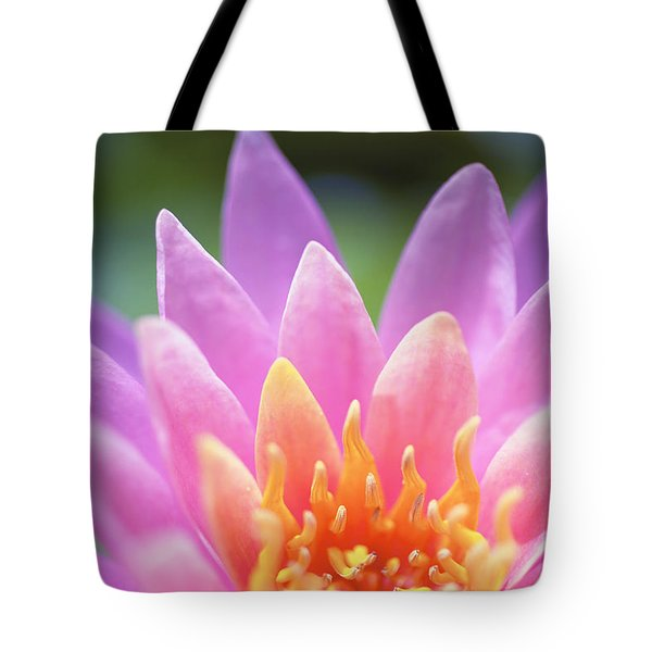 Bright Pink Water Lily Tote Bag by Kicka Witte