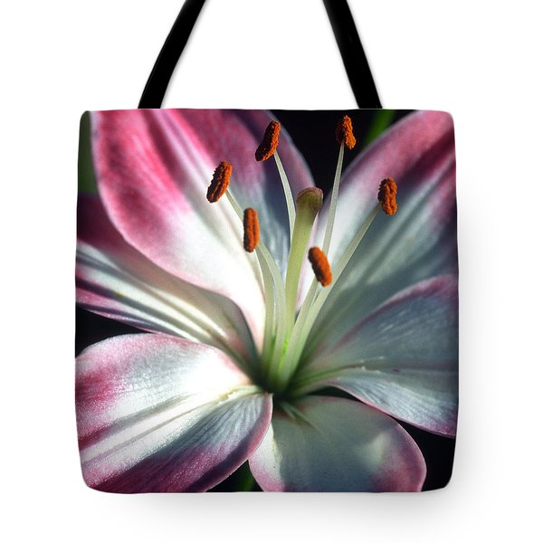 Brilliance Tote Bag by Kathy Yates