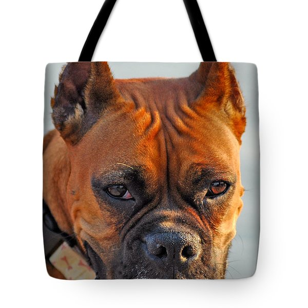 Bring it on Tote Bag by Joann Vitali