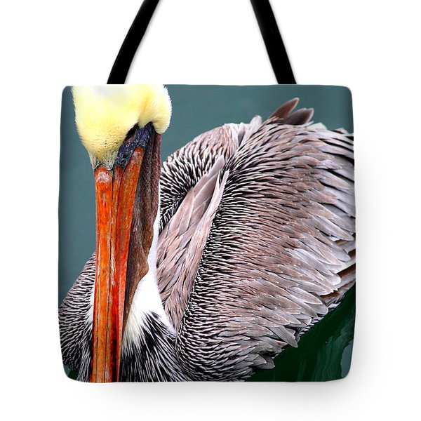 Brown Pelican . 7d8287 Tote Bag by Wingsdomain Art and Photography