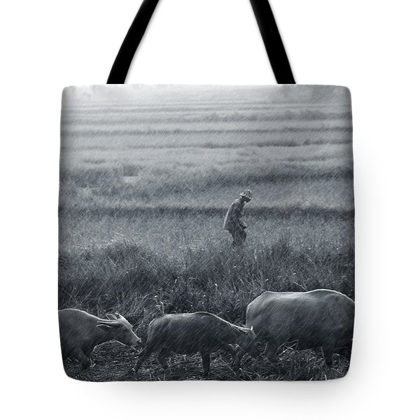 Buffalo And Monsoon Rain Tote Bag by Anonymous