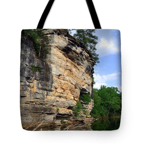 Buffalo Bluff 2 Tote Bag by Marty Koch