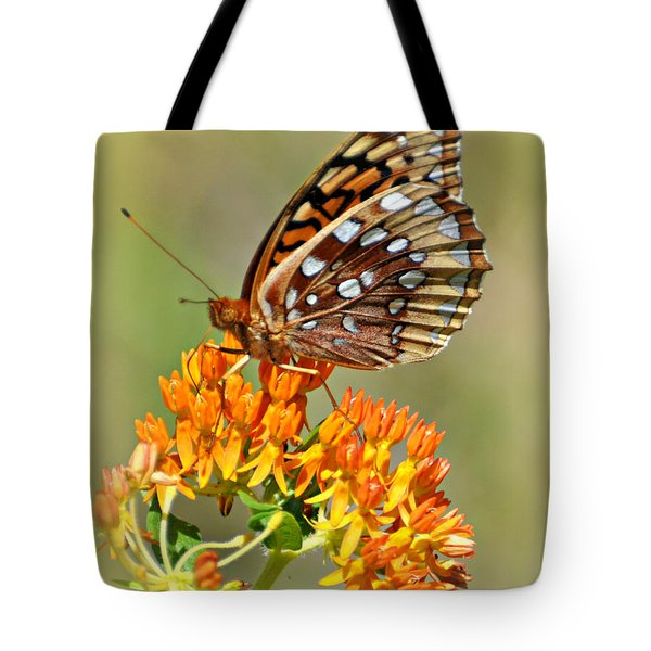 Butterfly Weed 1 Tote Bag by Marty Koch