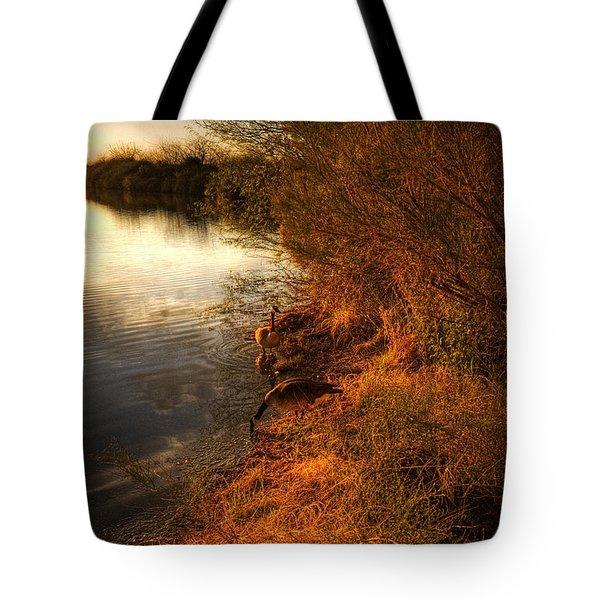 By The Evening's Golden Glow Tote Bag by Saija  Lehtonen