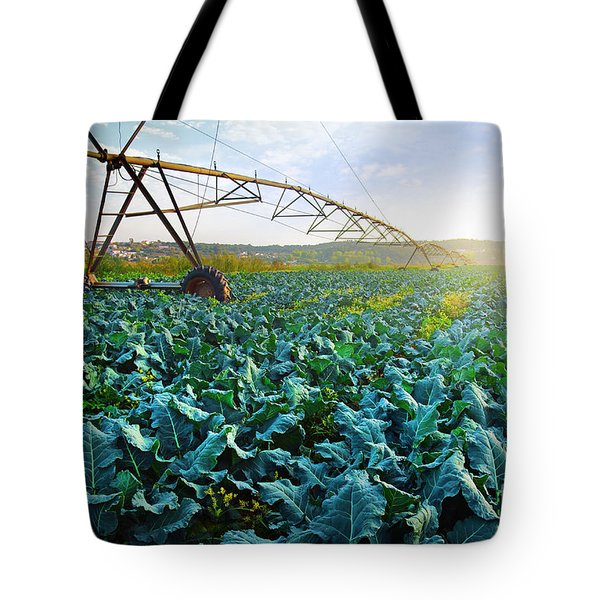 Cabbage Growth Tote Bag by Carlos Caetano