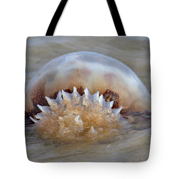 Cabbage Head Jellyfish  Tote Bag by Betsy Knapp