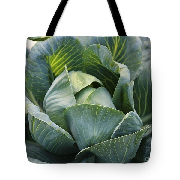 Cabbage in the Vegetable Garden Tote Bag by Carol Groenen