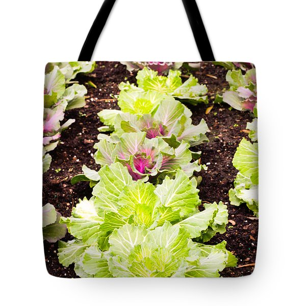 Cabbages Tote Bag by Tom Gowanlock