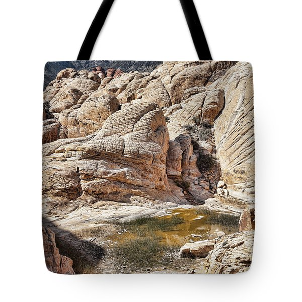 Calico Tanks Tote Bag by Kelley King