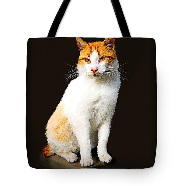 Calico Tote Bag by Tom Schmidt