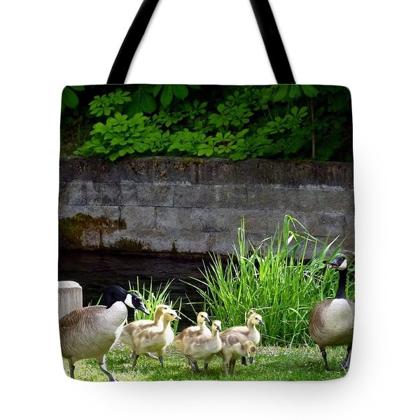 Canada Geese With Goslings Tote Bag by Will Borden
